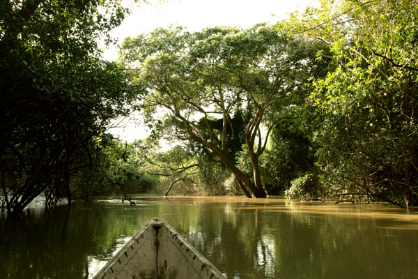 Canoeing on Mole River, Ghana
