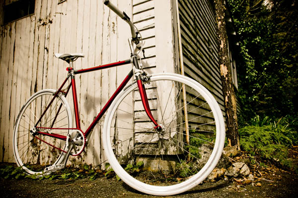 Custom single speed freewheel bicycle for Lisa