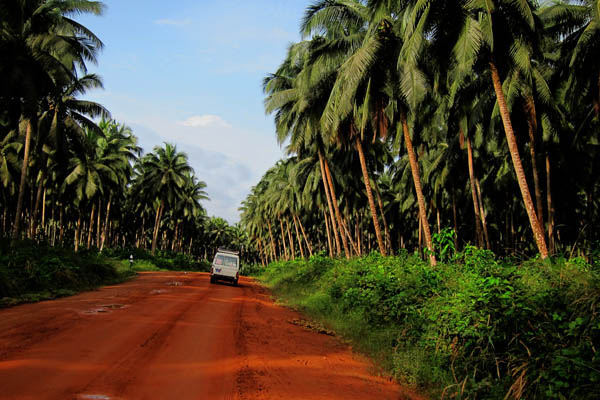 The road from Tabou to Para, Côte d'Ivoire