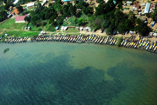 Fishing boats line the shore of Lake Victoria