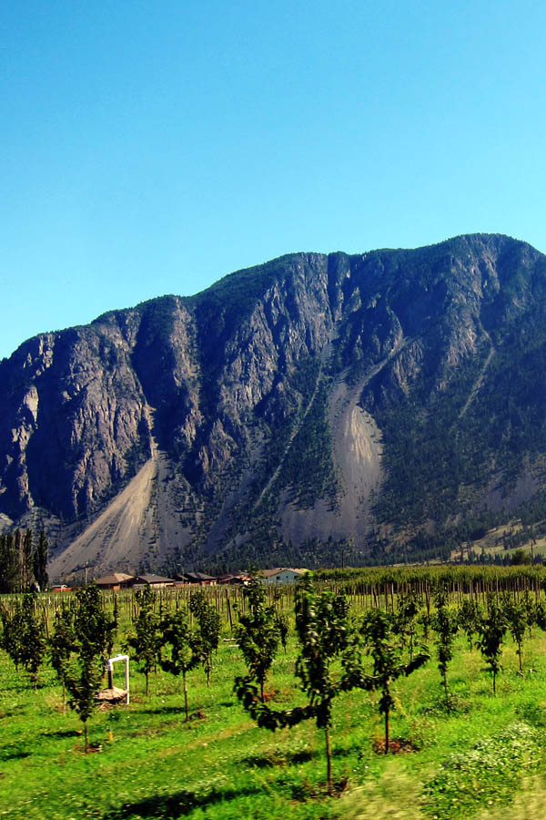Okanagan wine country scenery