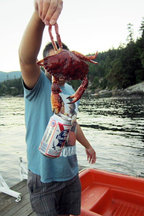 Hipster crab drinks PBR
