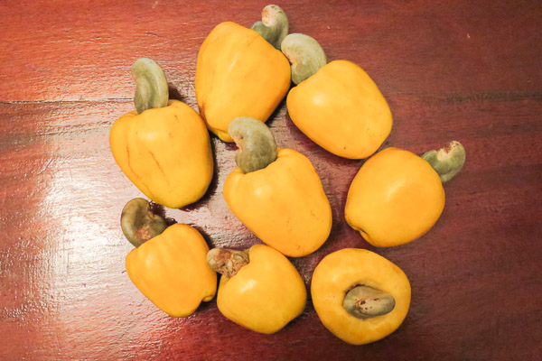 8 cashew apples, with cashews still clinging on