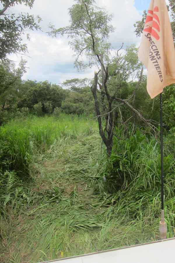 A path hacked through the tall grass for the truck