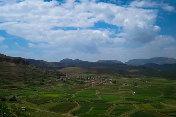 Green fields in Yemen