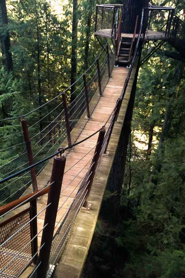 Capilano Treetops Adventure, North Vancouver