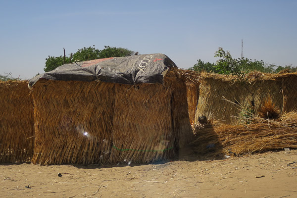 Thatch hut in an IDP camp, Monguno, Borno State, Nigeria